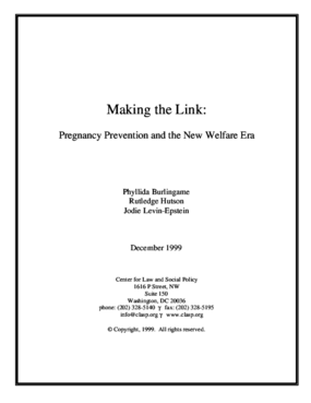 Making the Link: Pregnancy Prevention and the New Welfare Era