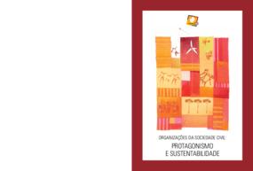 Organizações da sociedade civil: protagonismo e sustentabilidade