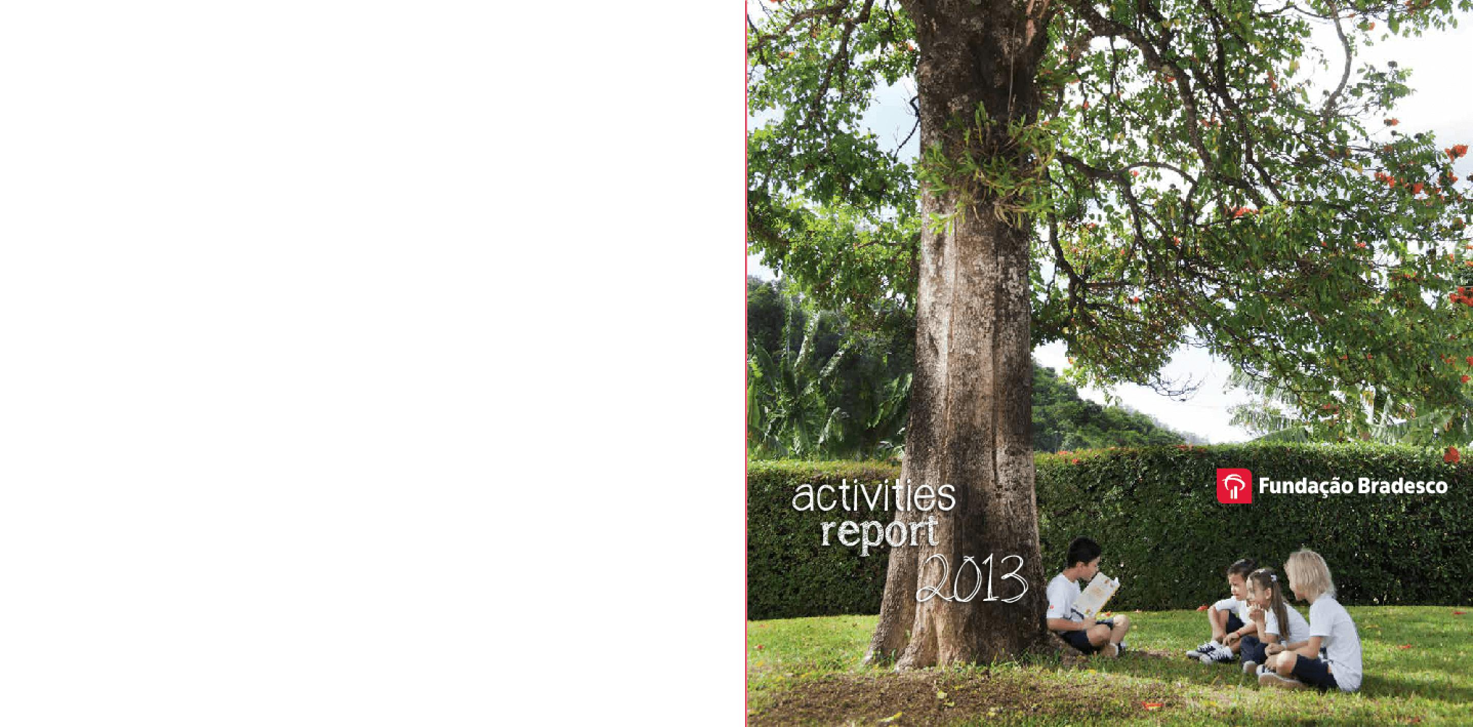 Activities Report 2013 -- Fundação Bradesco