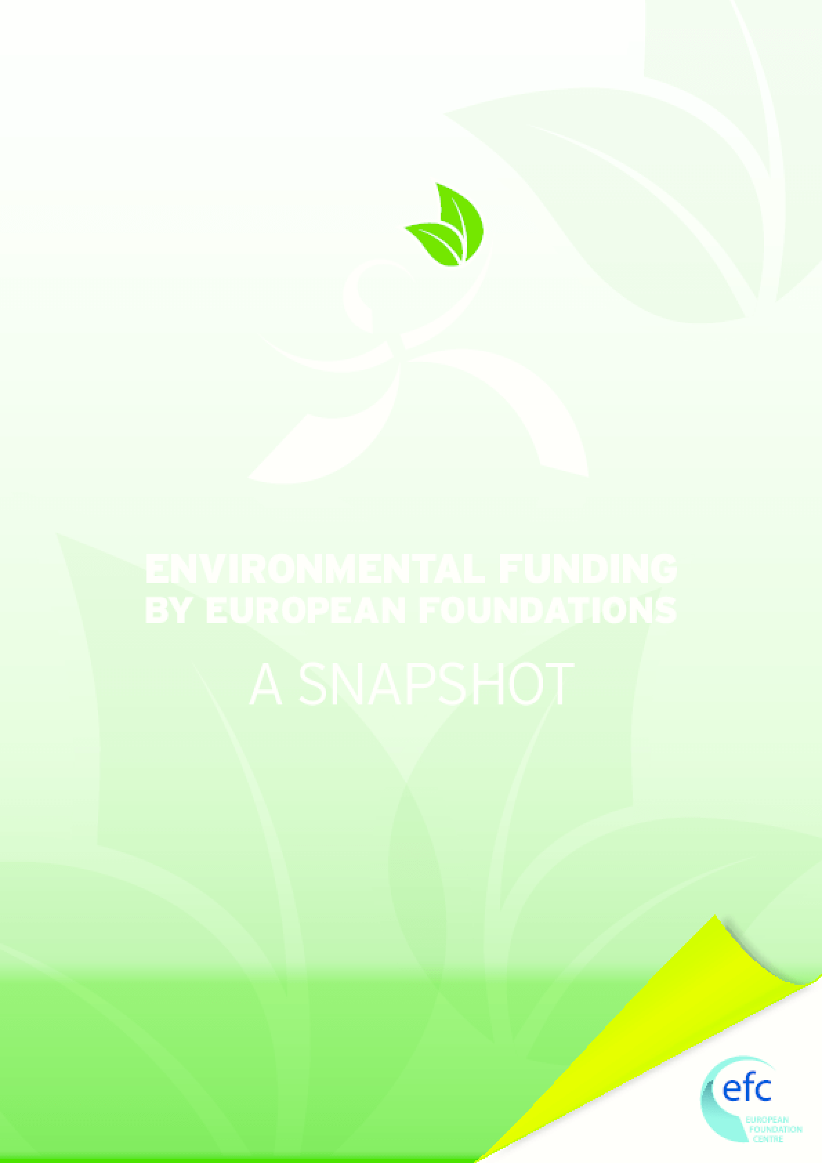 Environmental Funding by European Foundations: A Snapshot