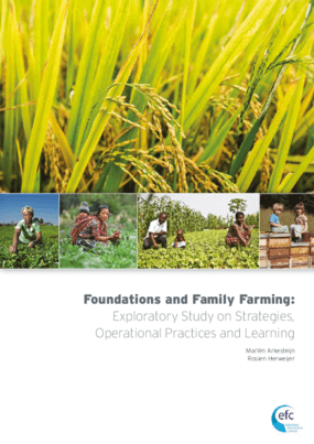 Foundations and Family Farming: Exploratory Study on Strategies, Operational Practices and Learning