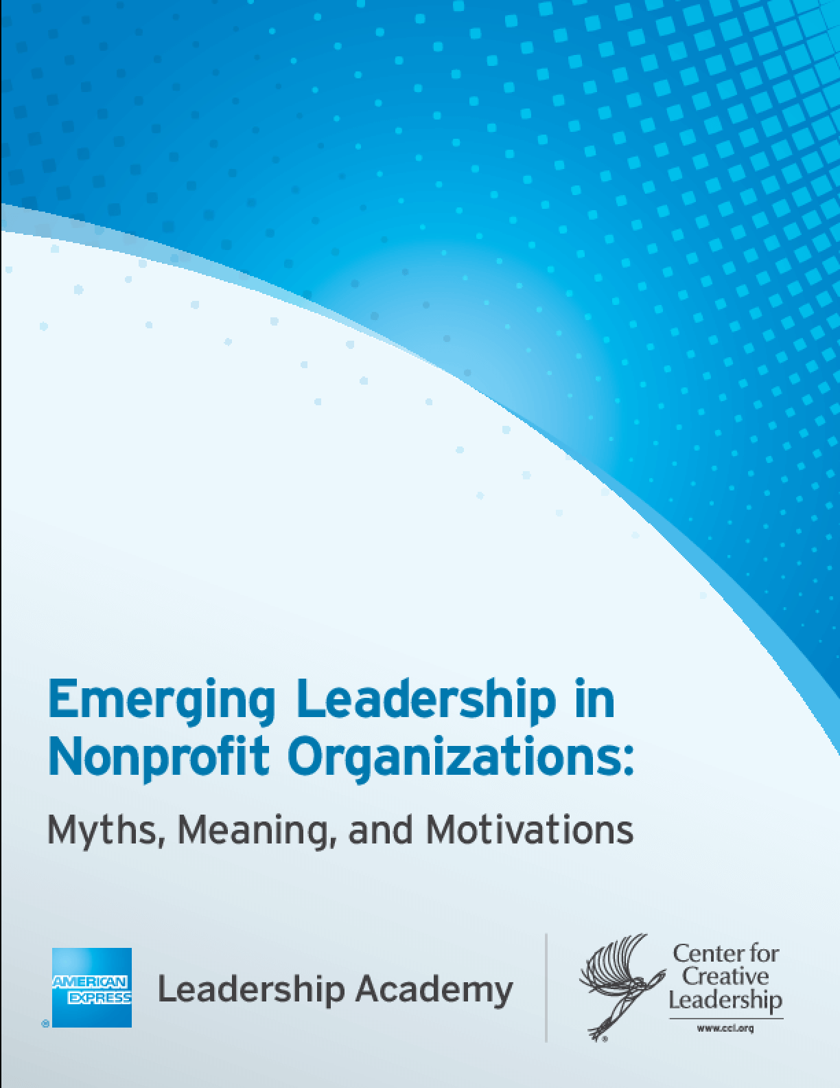 Emerging Leadership in Nonprofit Organizations: Myths, Meaning and Motivations