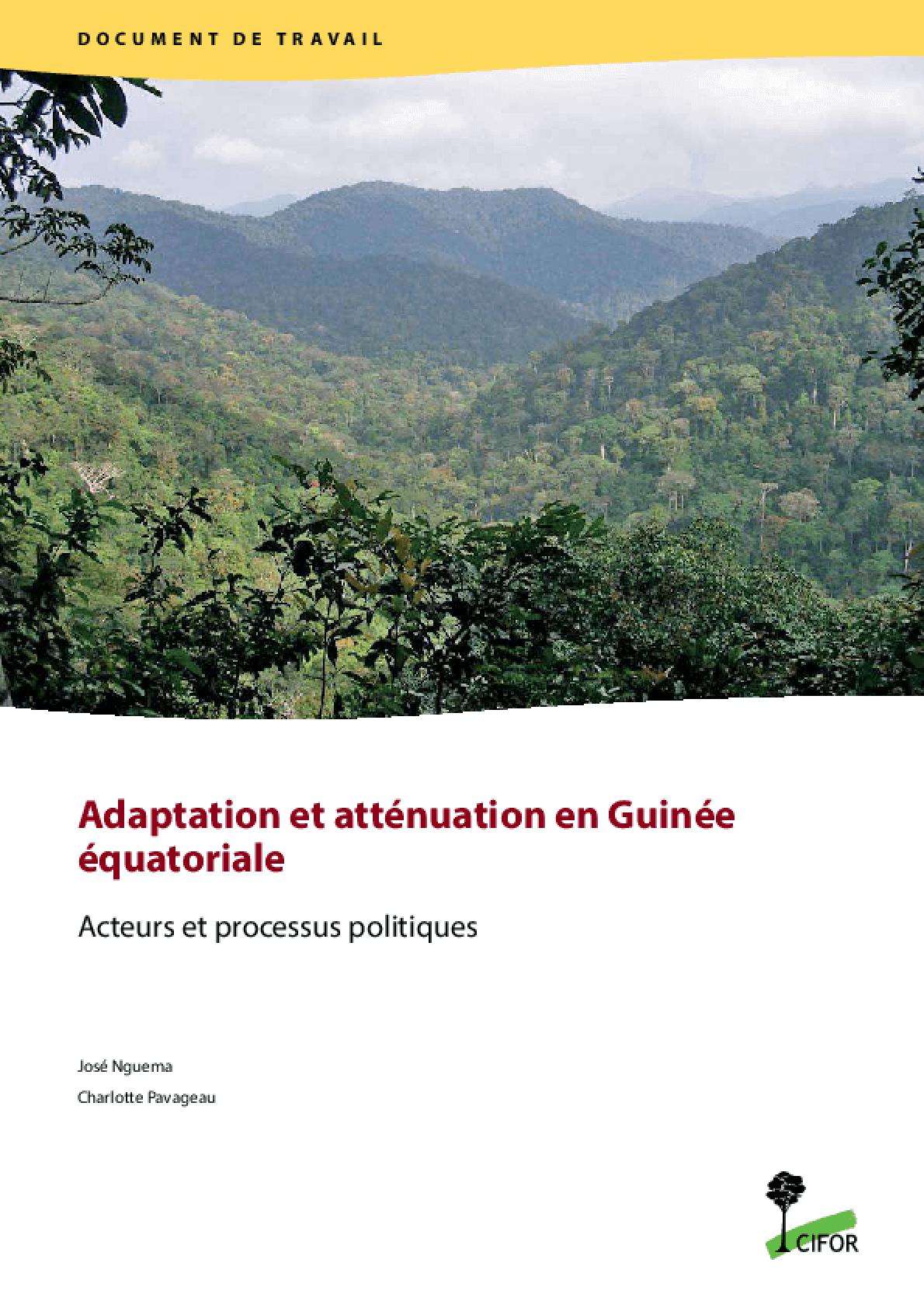Adaptation et Atténuation en Guinée équatoriale, Acteurs et Processus Politiques