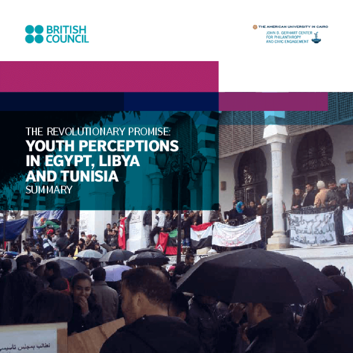 The Revolutionary Promise: Youth Perceptions in Egypt, Libya and Tunisia