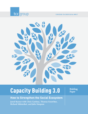 Capacity Building 3.0: How to Strengthen the Social Ecosystem