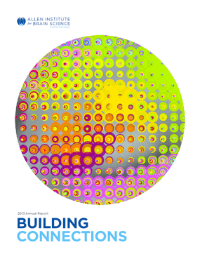 Building Connections: 2013 Annual Report