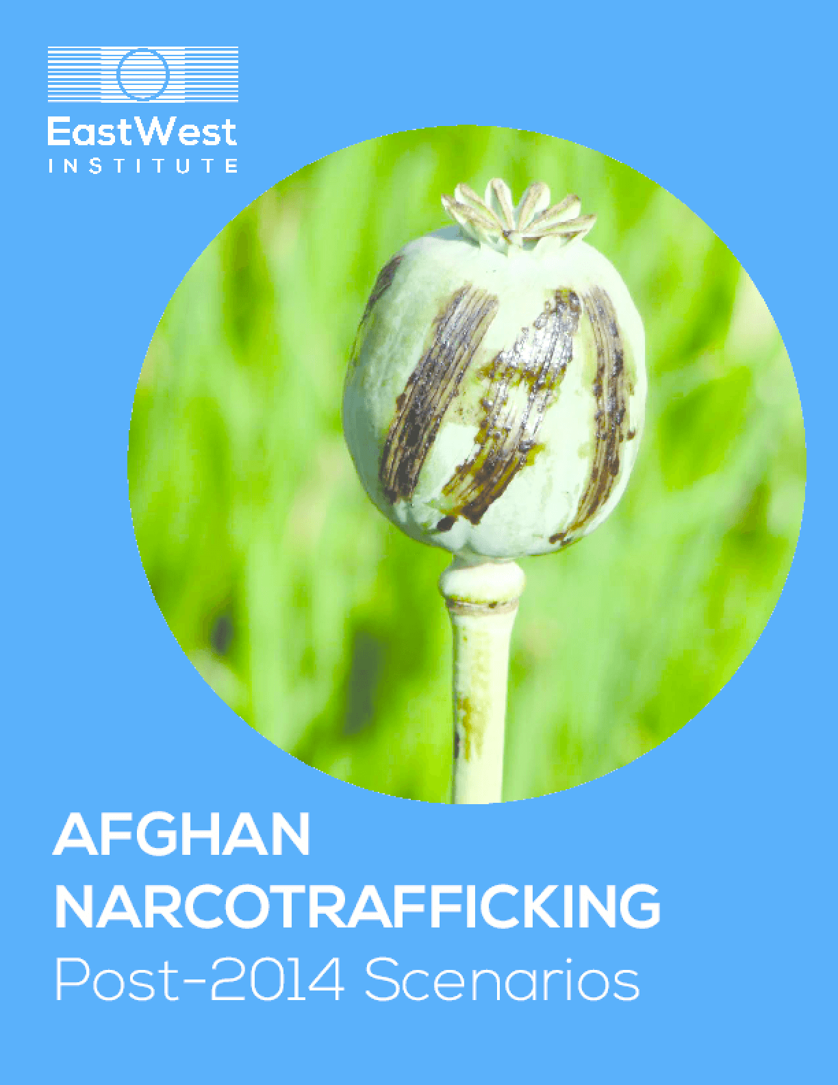 Afghan Narcotrafficking Post-2014 Scenarios