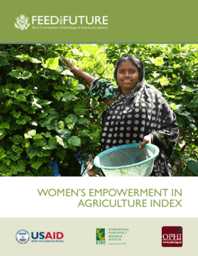 Women's Empowerment in Agriculture Index