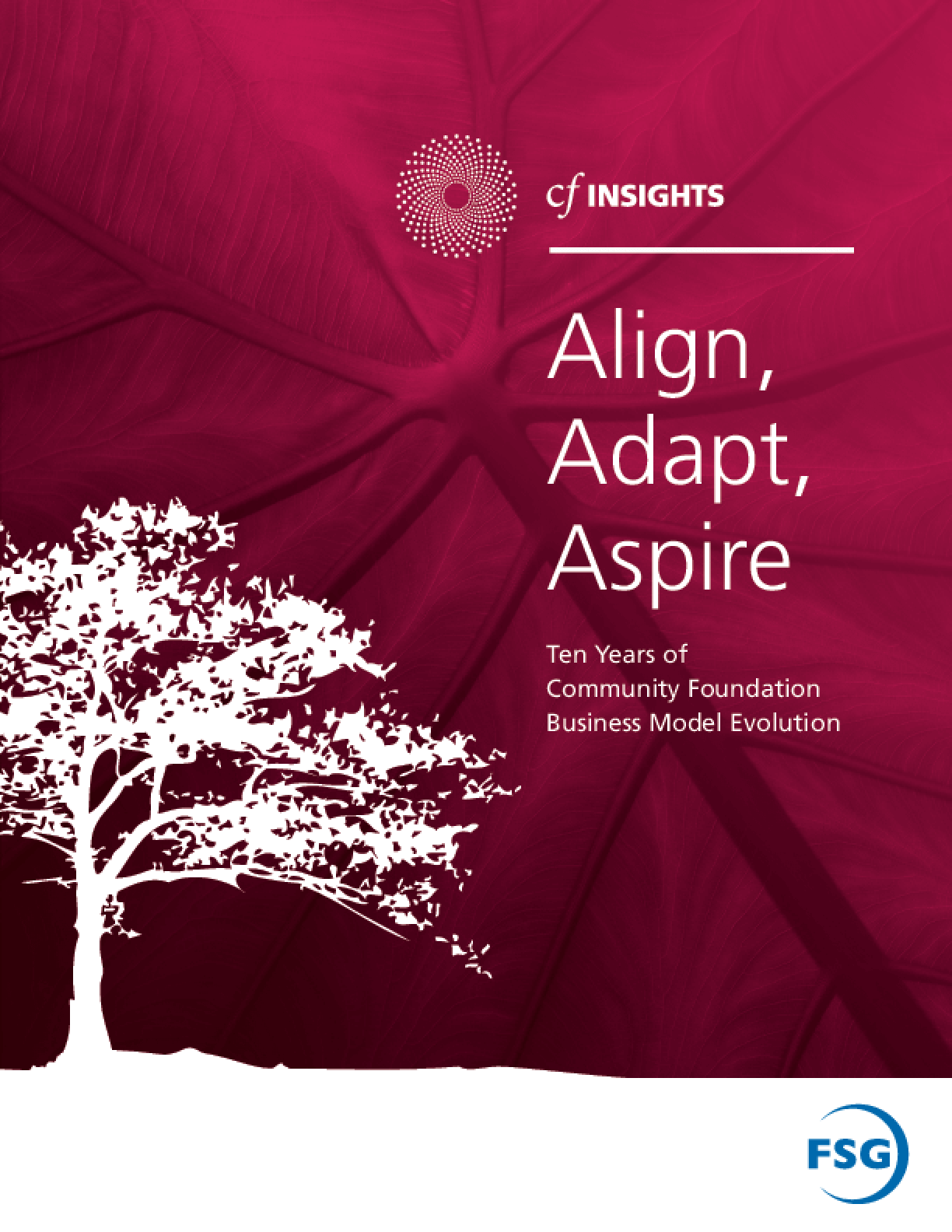 Align, Adapt, Aspire: Ten Years of Community Foundation Business Model Evolution