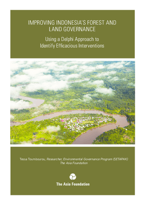 Improving Indonesia's Forest and Land Governance: Using a Delphi Approach to Identify Efficacious Interventions
