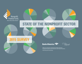 State of the NonProfit Sector 2015 Survey Brochure