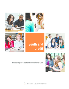Youth and Credit: Protecting the Credit of Youth in Foster Care