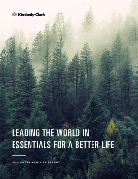 Leading The World In Essentials For A Better Life: 2014 Sustainability Report