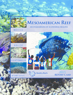 2015 Report Card for the Mesoamerican Reef