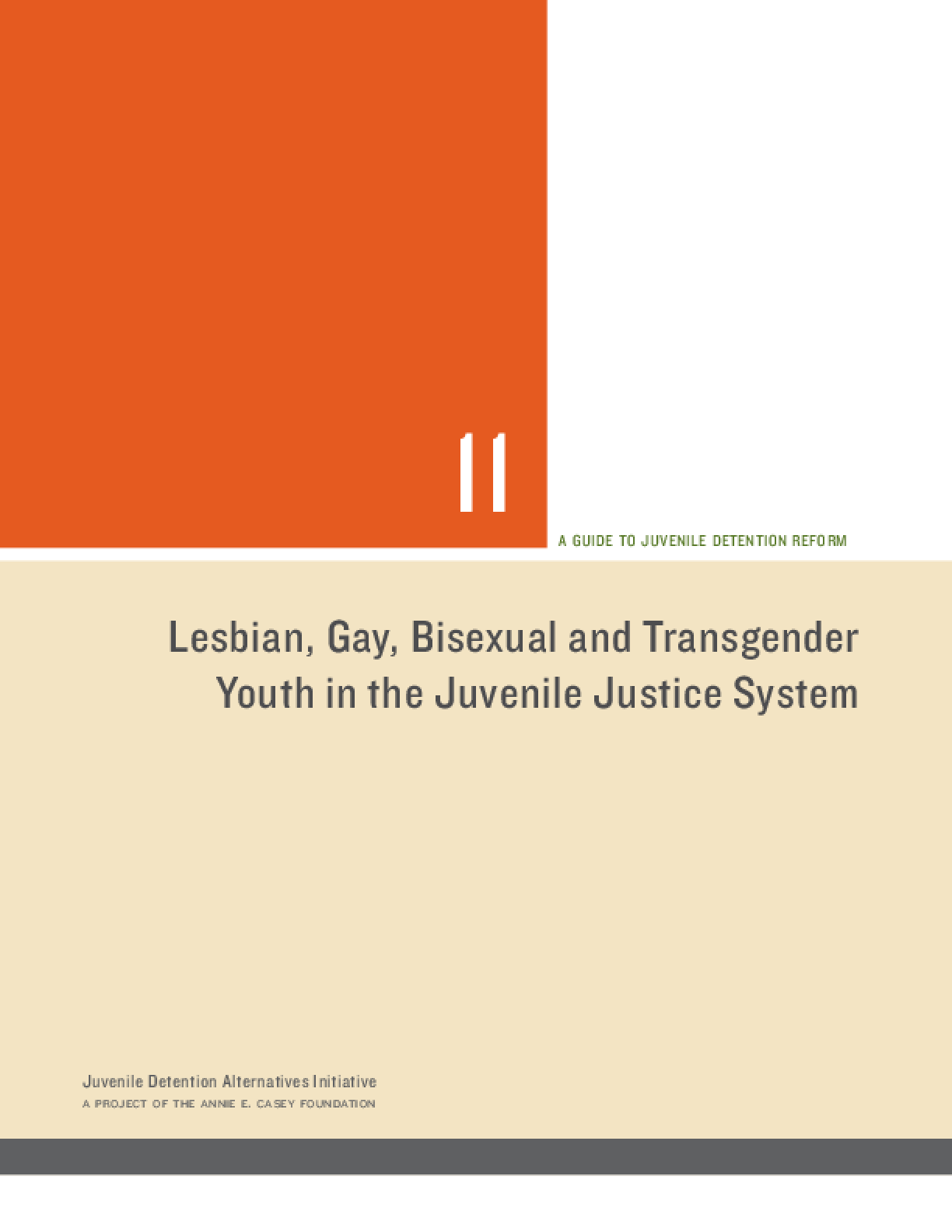 Lesbian, Gay, Bisexual and Transgender Youth in the Juvenile Justice System