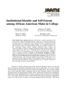 Institutional Identity and Self-Esteem among African American Males in College