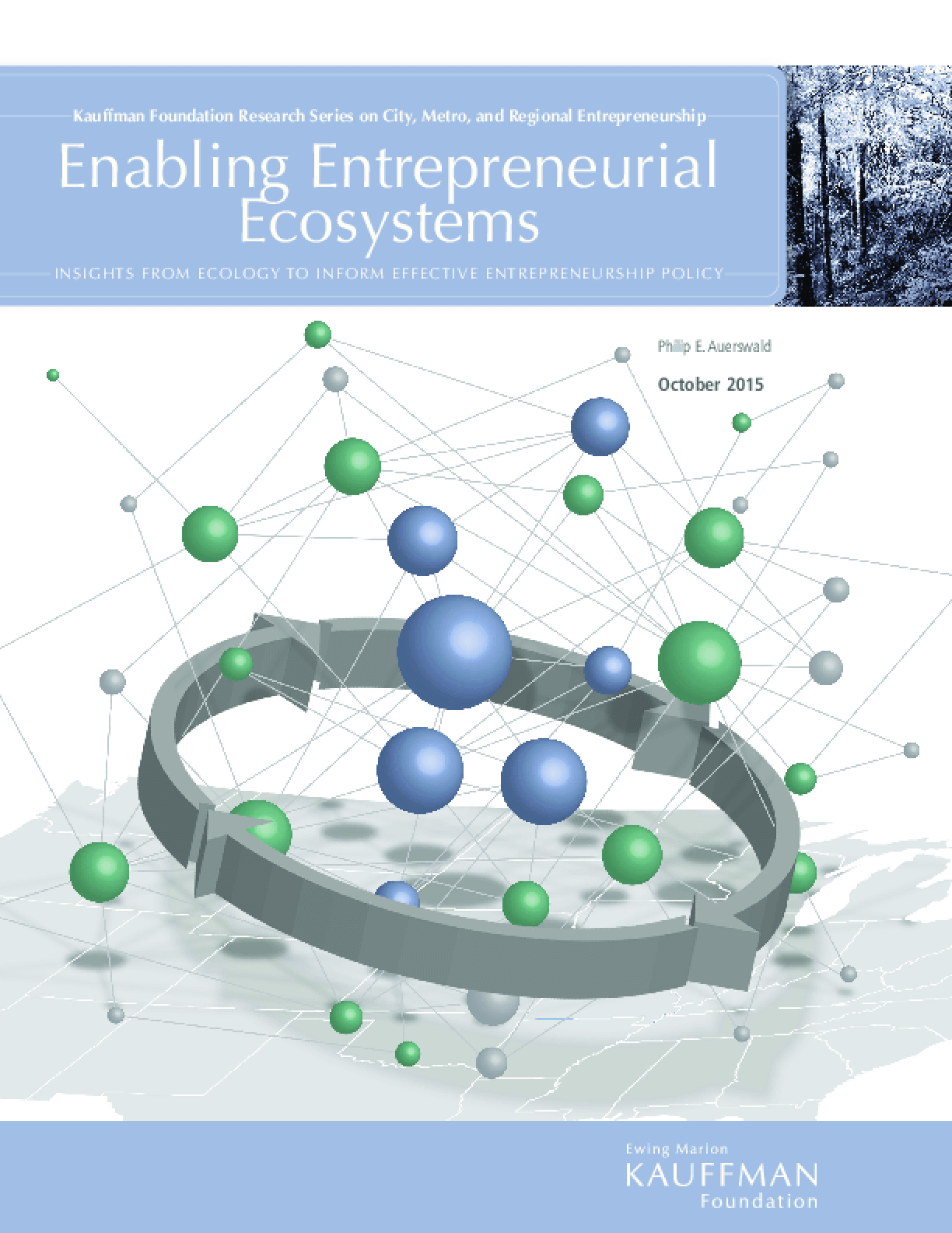 Enabling Entrepreneurial Ecosystems