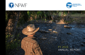 FY 2013 Annual Report: Columbia Basin Water Transactions Program