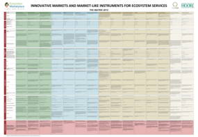 Innovative Markets and Market?Like Instruments for Ecosystem Services
