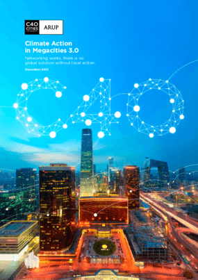 Climate Action In Megacities 3.0