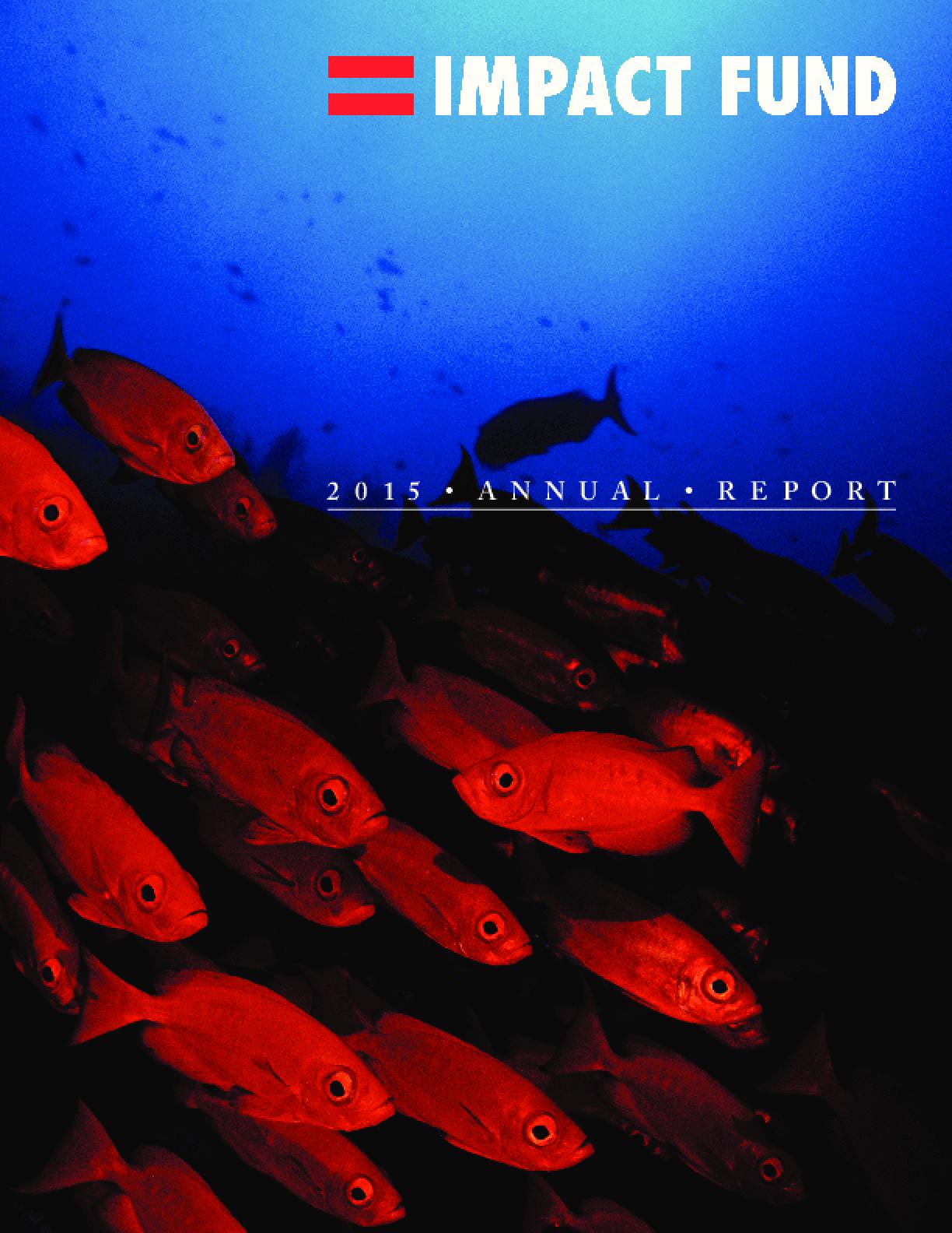 Impact Fund 2015 Annual Report