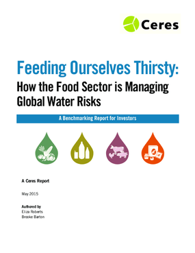 Feeding Ourselves Thirsty: How the Food Sector is Managing Global Water Risks
