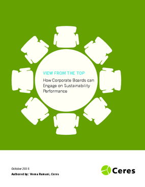 View from the Top: How Corporate Boards Can Engage on Sustainability Performance