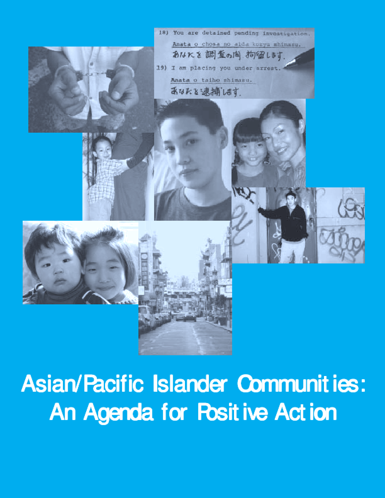 Asian/Pacific Islander Communities: An Agenda for Positive Action