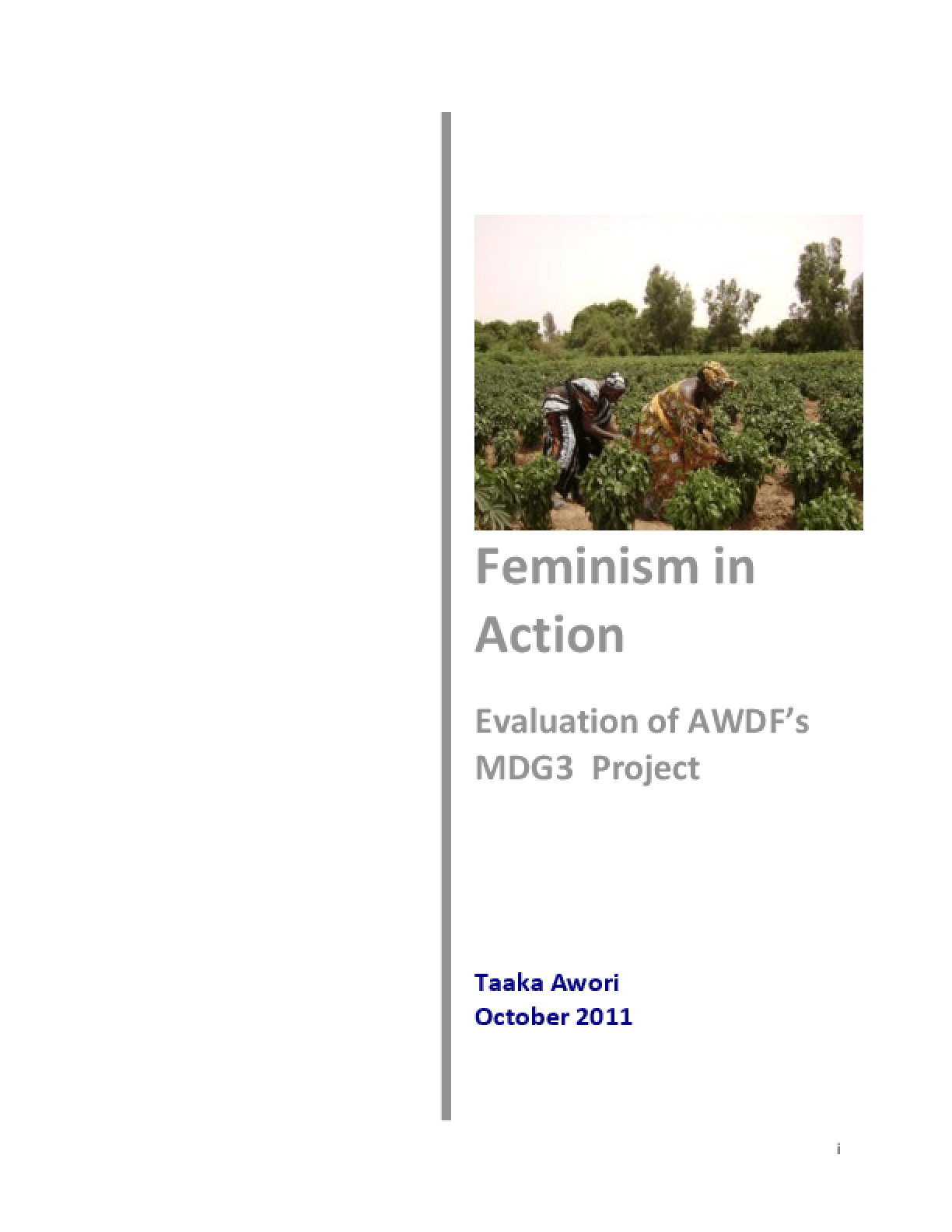 Feminism in Action: Evaluation of AWDF's MDG3 Project