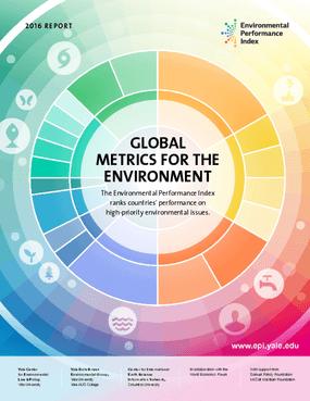 Global Metrics for the Environment