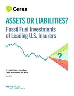 Assets or Liabilities? Fossil Fuel Investments of Leading U.S. Insurers