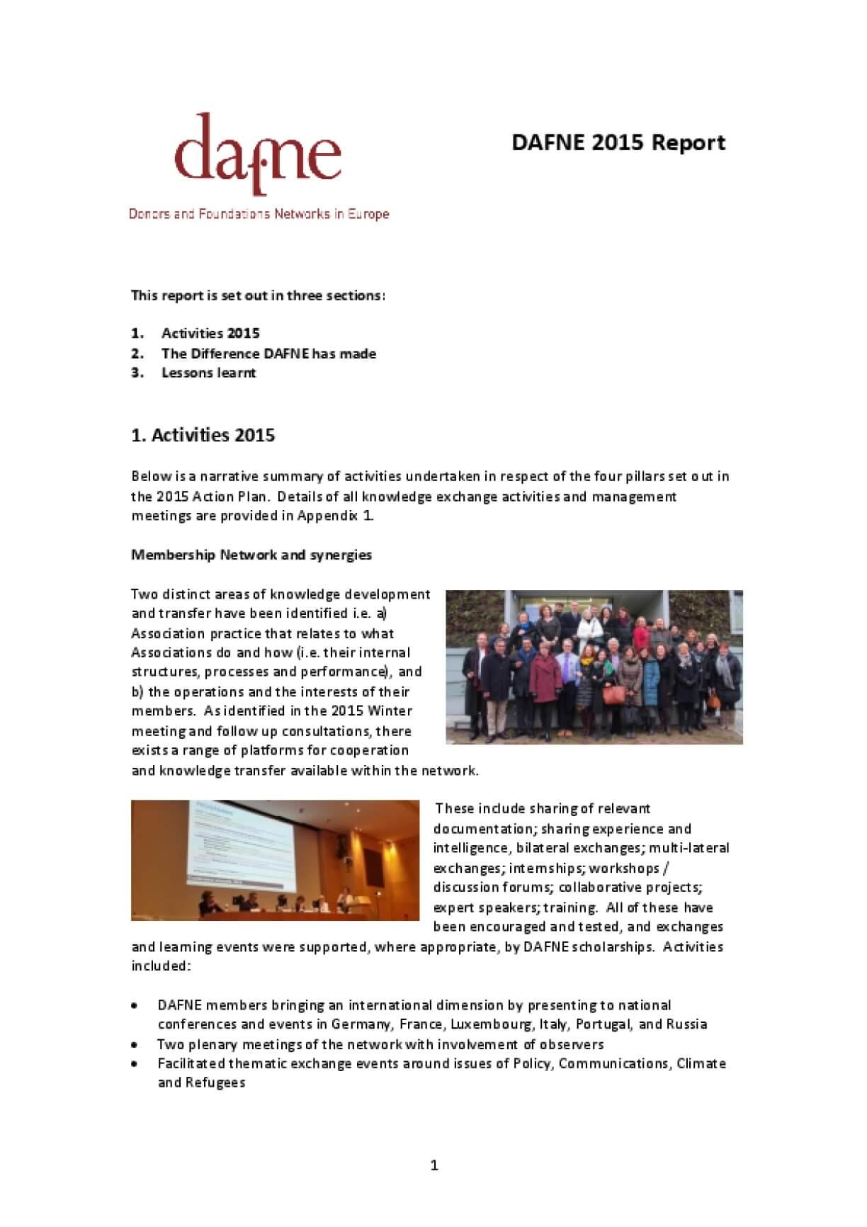 DAFNE 2015 Report
