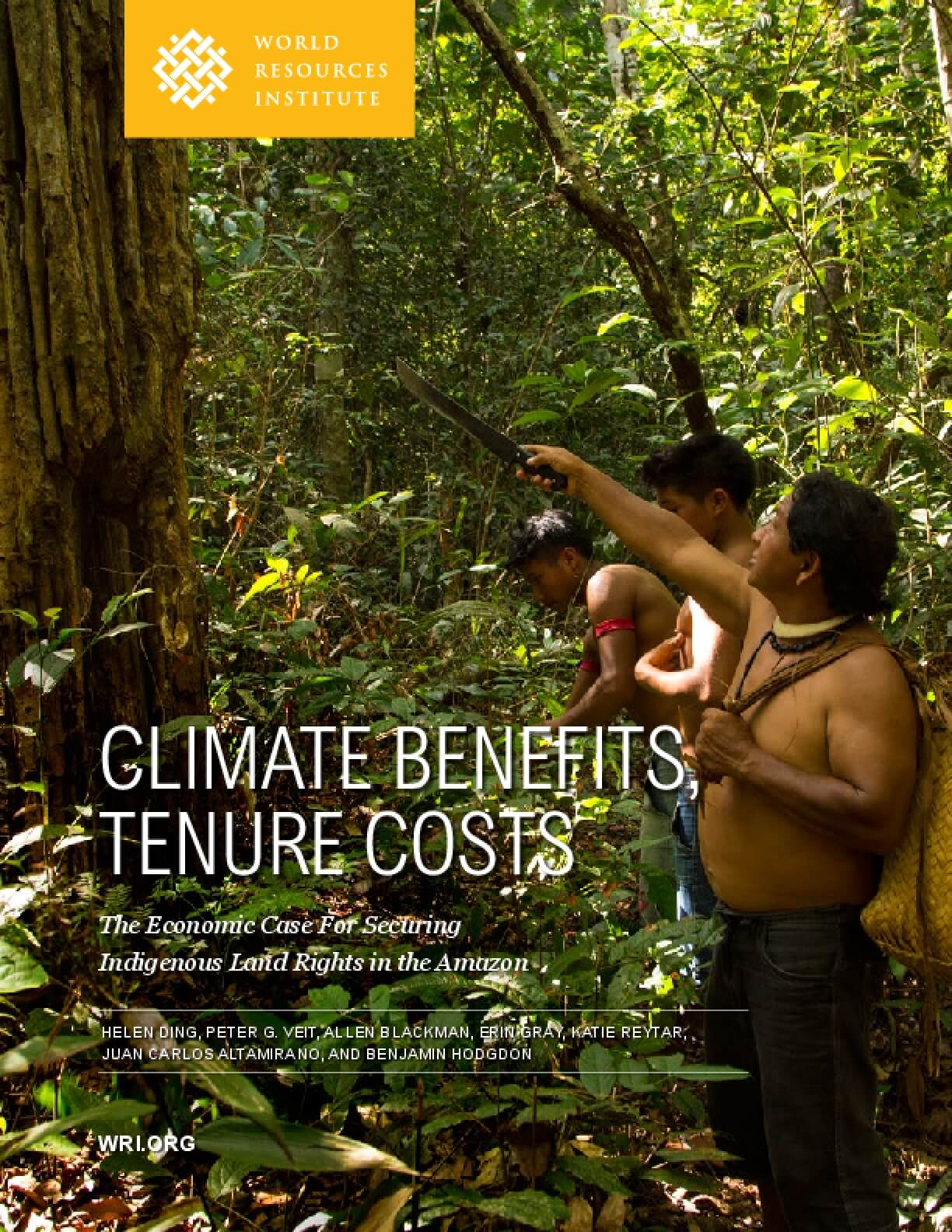Climate Benefits Tenure Costs: The Economic Case for Securing Indigenous Land Rights in the Amazon