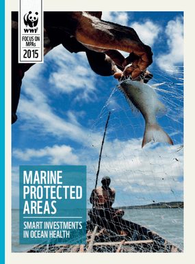 Marine Protected Areas: Smart Investments in Ocean Health