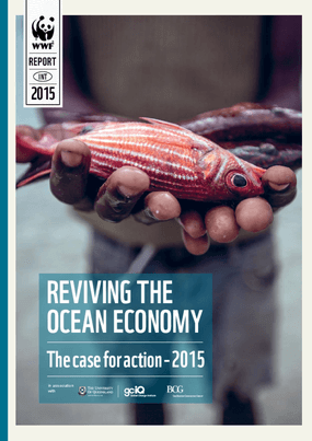 Reviving the Oceans Economy: The Case for Action—2015