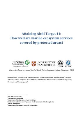 Attaining Aichi Target 11: How Well Are Marine Ecosystem Services Covered by Protected Areas?