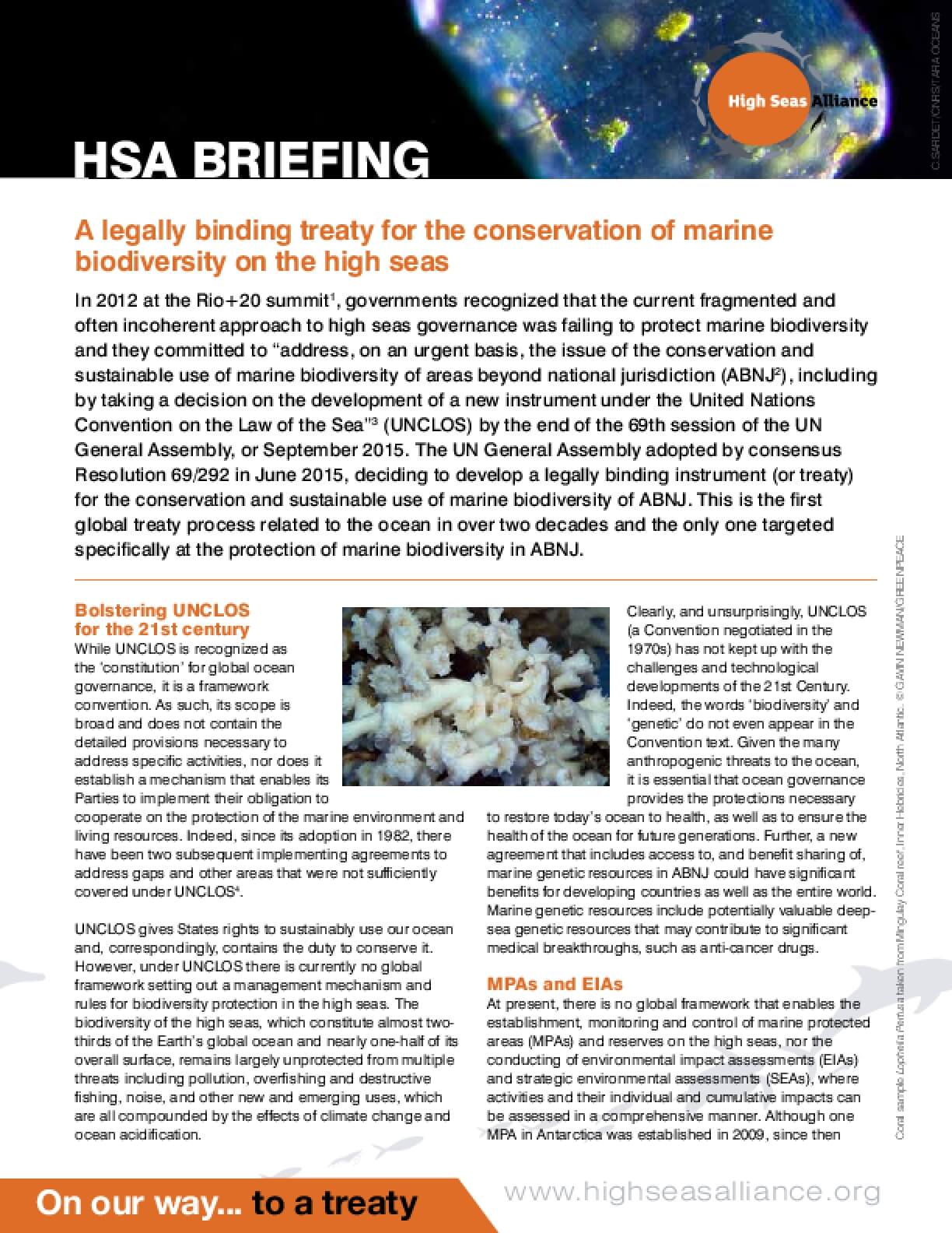 HSA Briefing 2:  The Need for a New Implementing Agreement Under UNCLOS on Marine Biodiversity of the High Seas