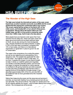 HSA Briefing 4: Wonders of the High Seas