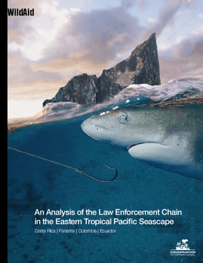 An Analysis of the Law Enforcement Chain in the Eastern Tropical Pacific Seascape