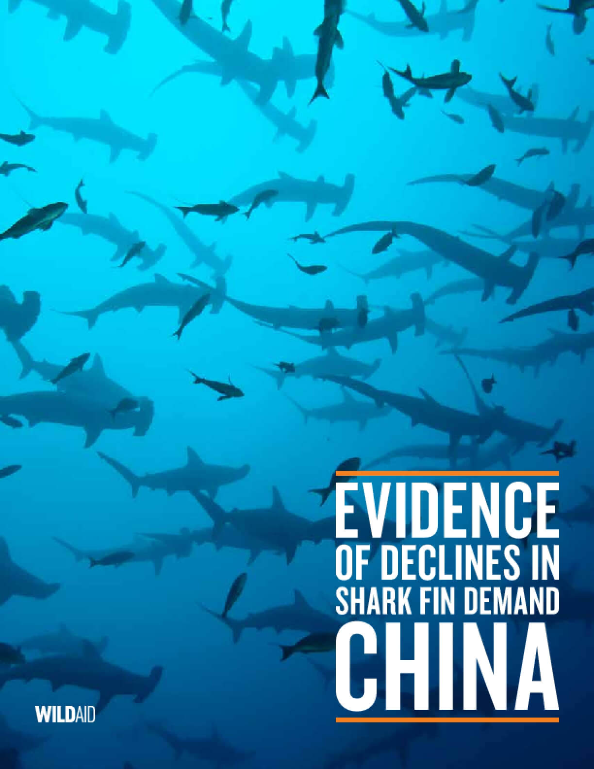 Evidence of Decline in Shark Fin Demand: China