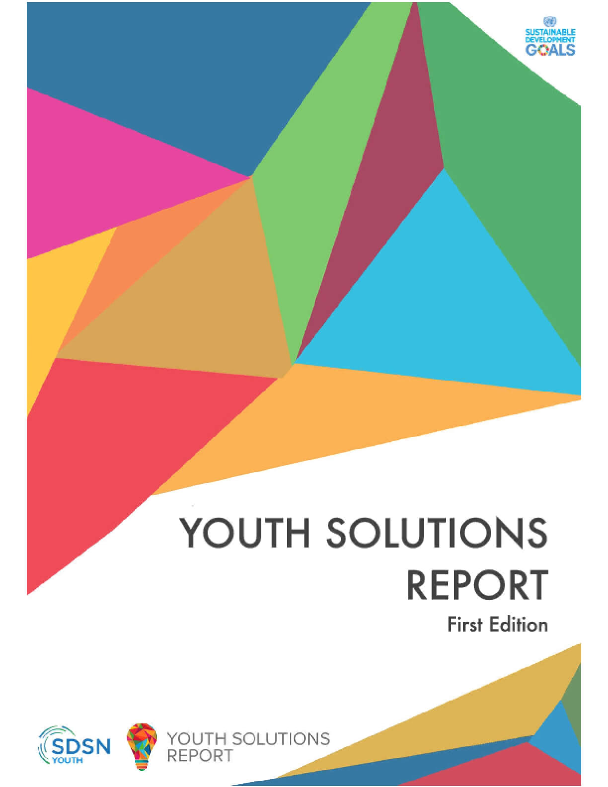 Youth Solutions Report - First Edition