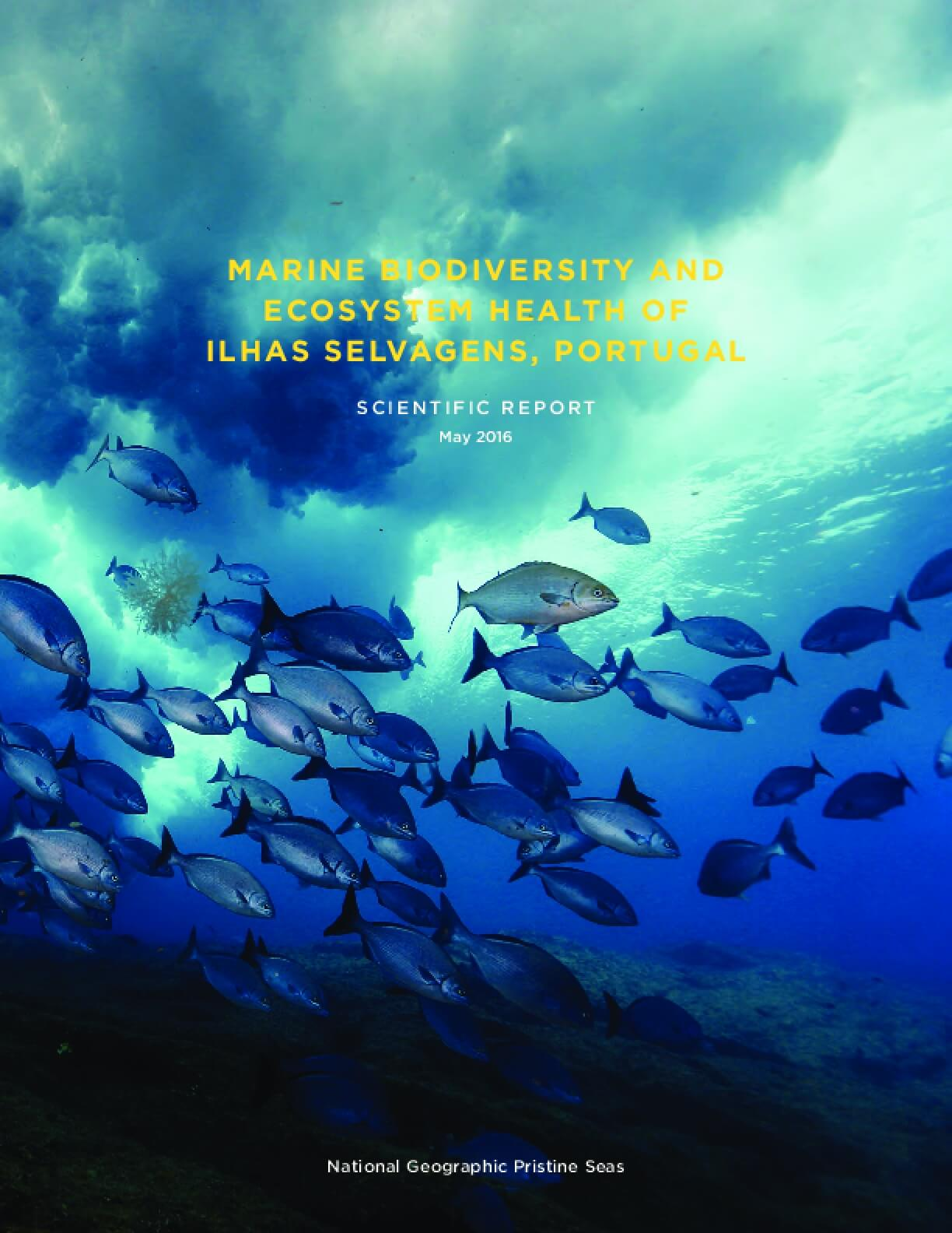 Marine Biodiversity and Ecosystem Health of Ilhas Selvagens, Portugal