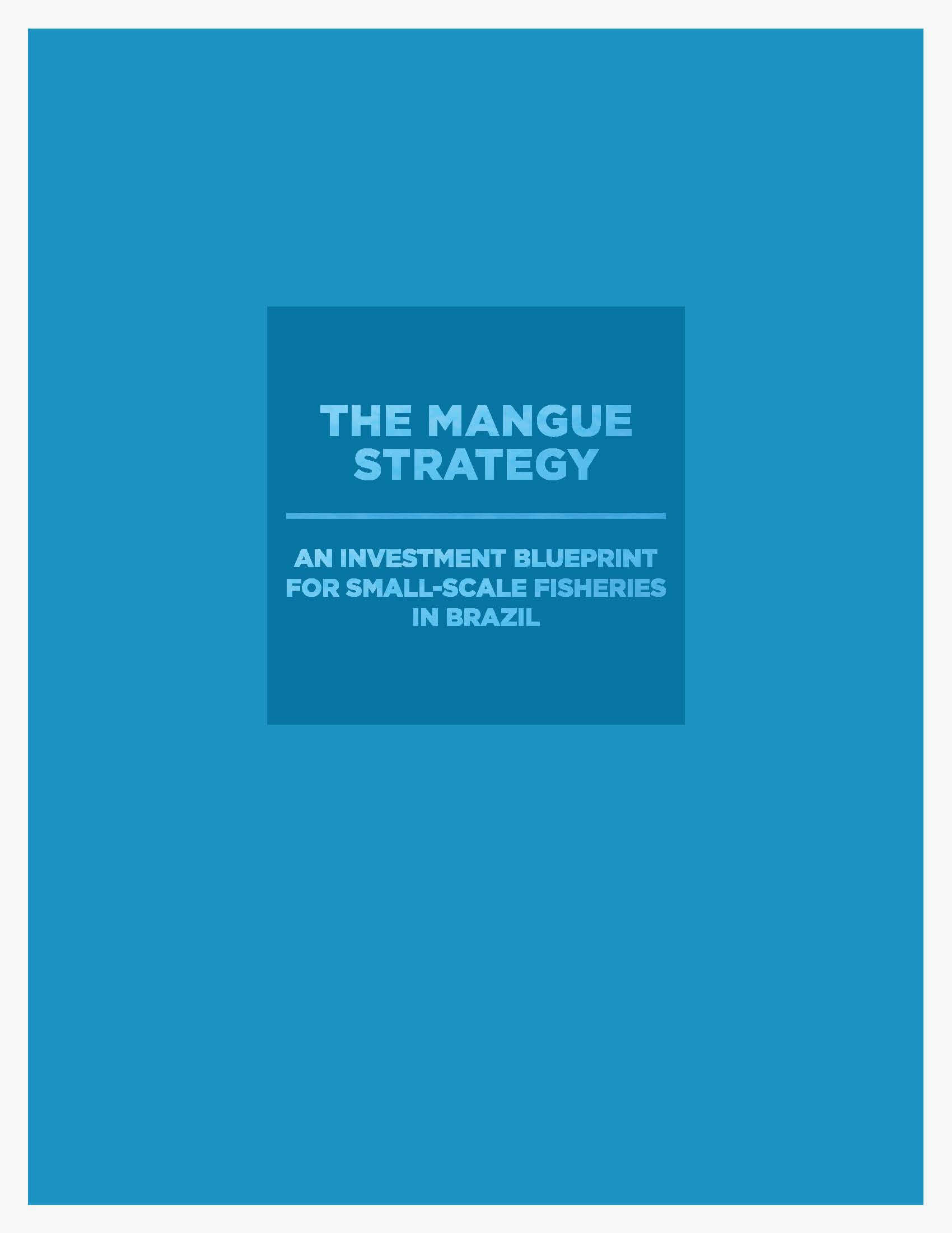 The Mangue Strategy : An Investment Blueprint for Small-Scale Fisheries in Brazil