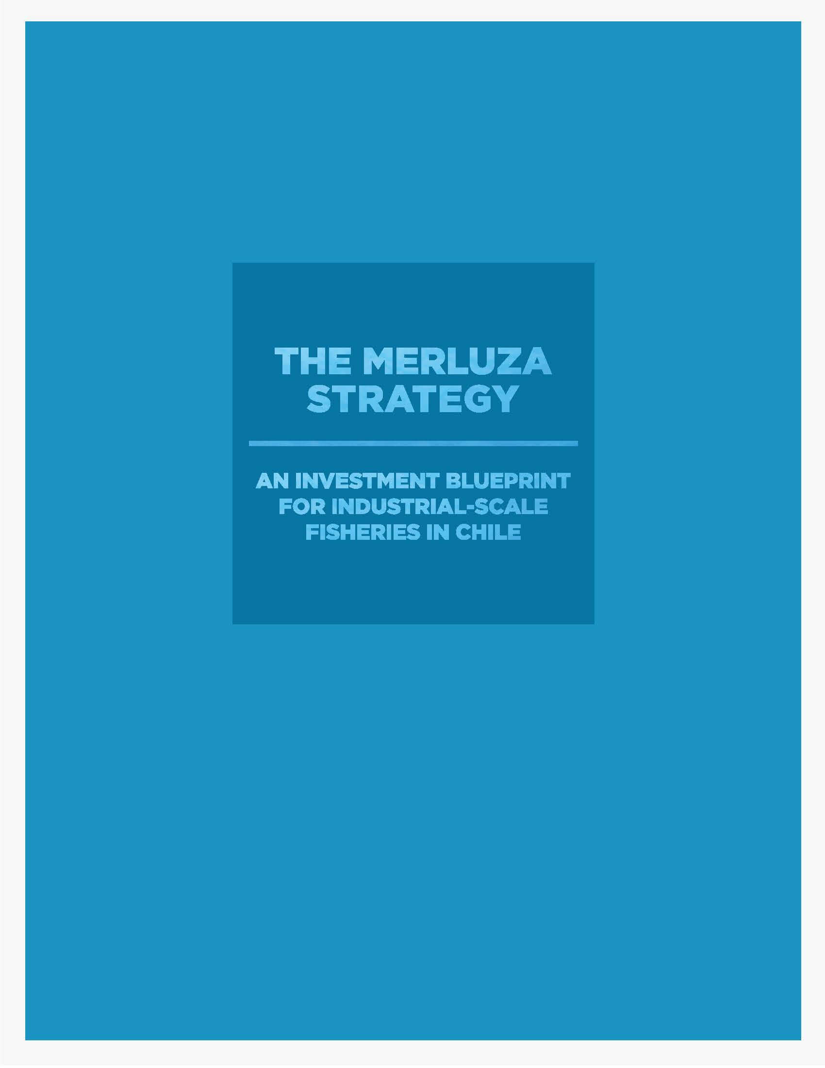 The Merluza Strategy : An Investment Blueprint for Industrial-Scale Fisheries in Chile
