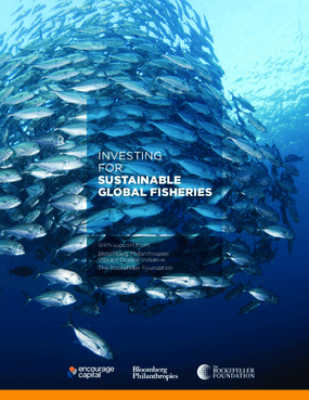The Nexus Blue Strategy : An Investment Blueprint for National-Scale Fisheries in The Philippines