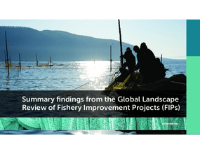 Summary Findings From the Global Landscape Review of Fishery Improvement Projects (FIPs)