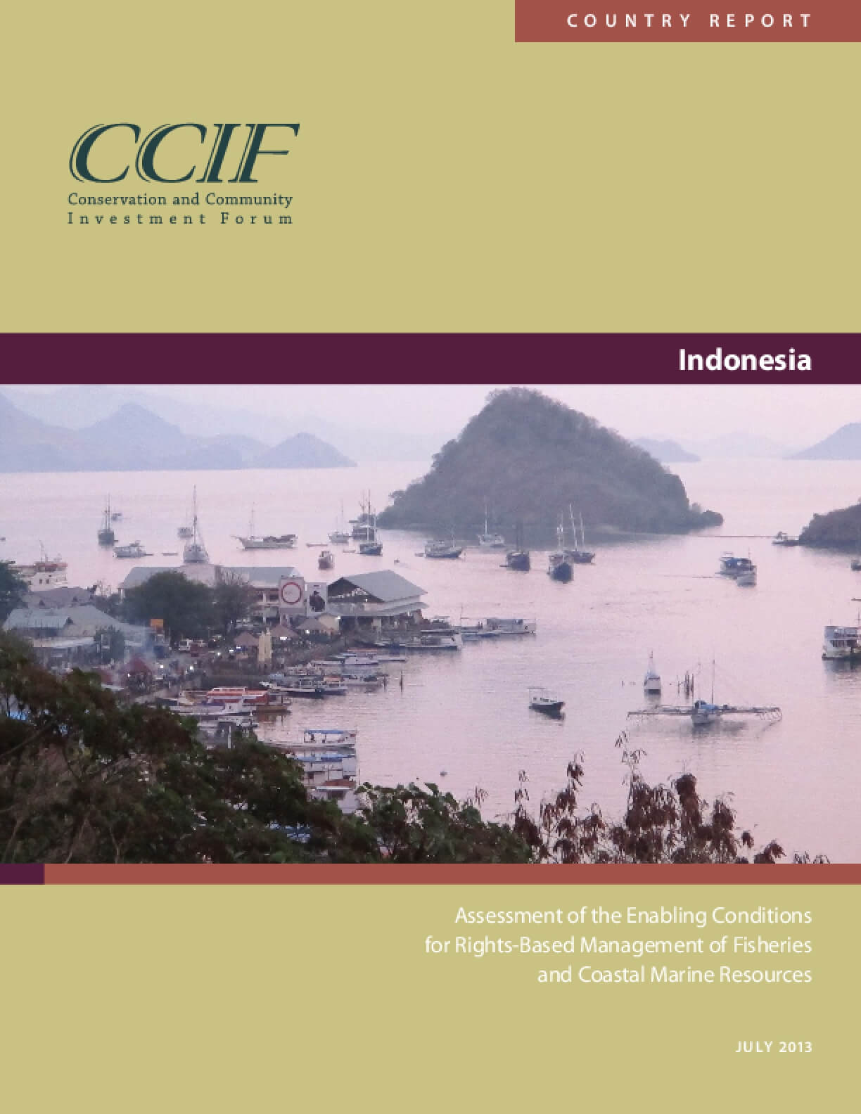 Indonesia Country Report