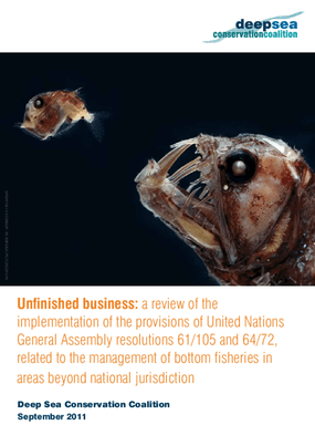 Unfinished Business: a Review of the Implementation of the Provisions of United Nations General Assembly Resolutions 61/105 and 64/72, Related to the Management of Bottom Fisheries in Areas Beyond National Jurisdiction