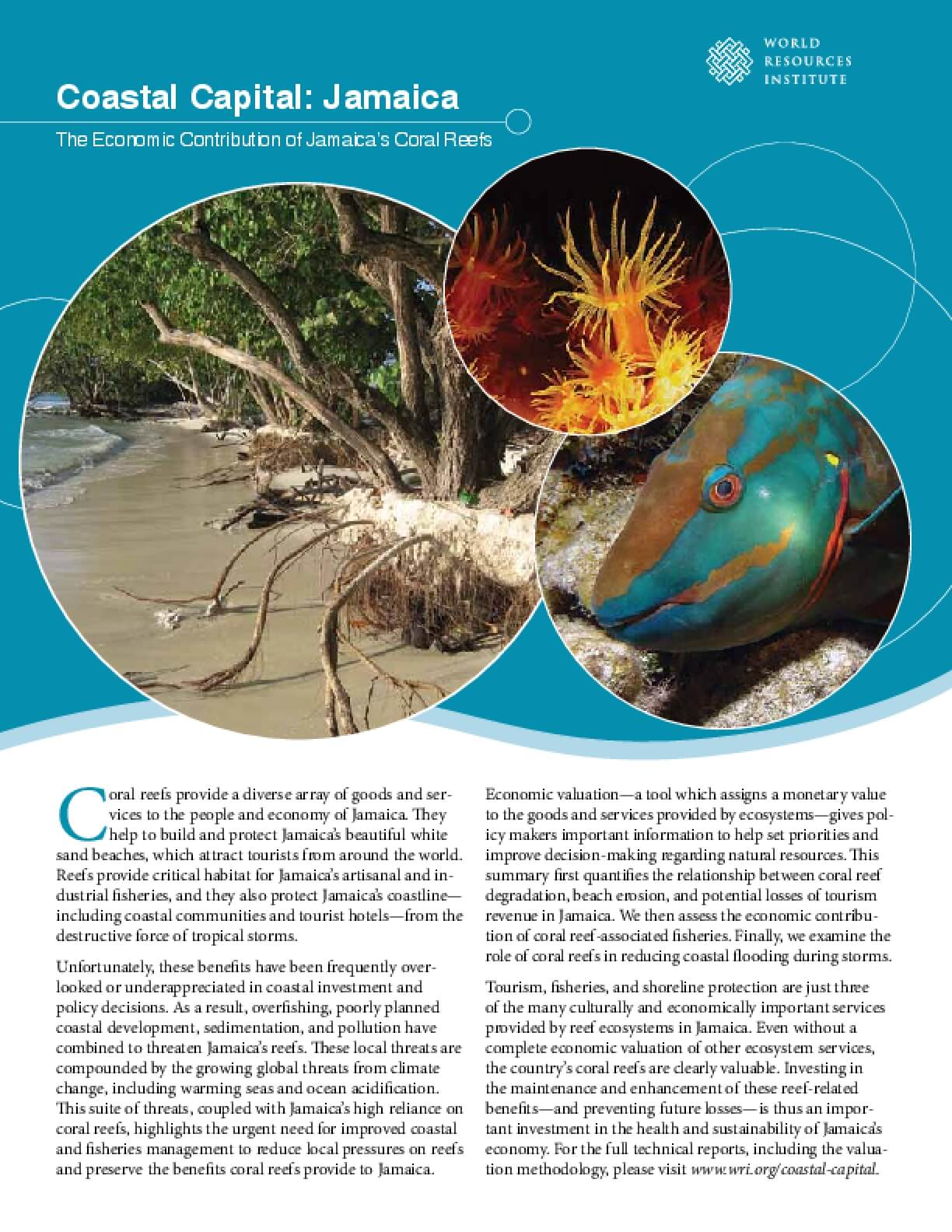 Coastal Capital: Jamaica. The Economic Contribution of Jamaica's Coral Reefs