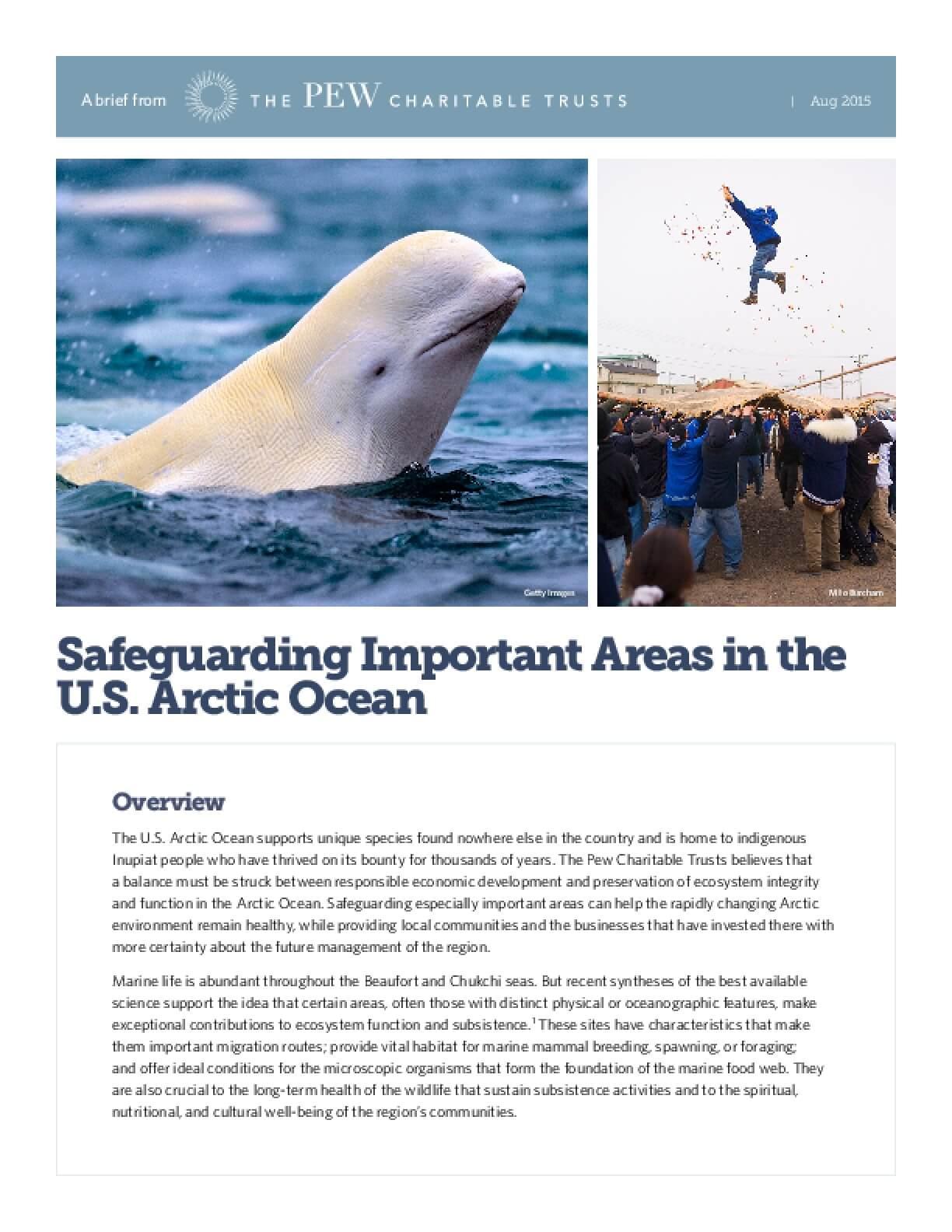 Safeguarding Important Areas in the U.S. Arctic Ocean